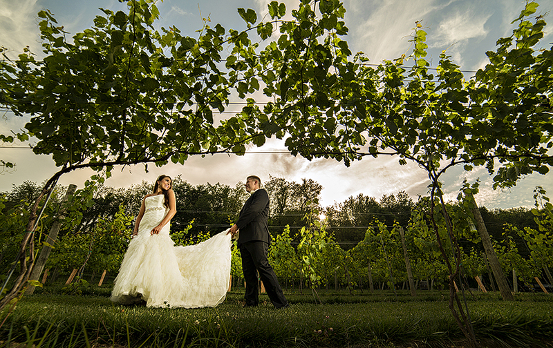 OJ_Geravsi_vineyard_Wedding_32