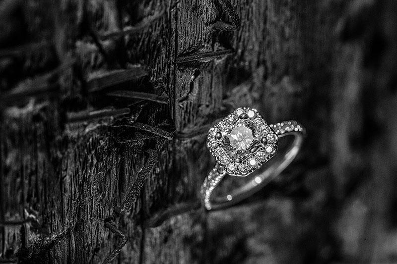 AE-Cleveland-Engagement-Wedding-10