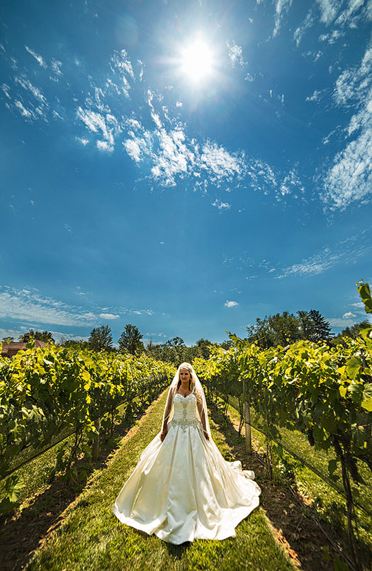 Gervasi-Vineyard-Wedding-06