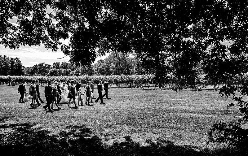 Gervasi-Vineyard-Wedding-13