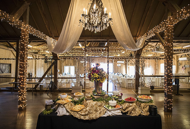 Brookside-farm-wedding-akron-wedding-photography-17